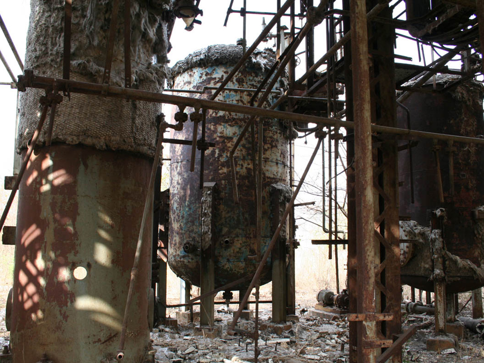 Suche nach bhopal Kuppeldatierung Website anmelden